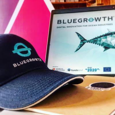 https://www.startupangra.com/wp-content/uploads/2019/06/Bluegrowth-BluegrowthStyle-Sustainability.jpg
